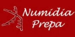 Logo Mise à niveau scientifique - Numidia Lyon